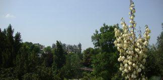 pariz v lete