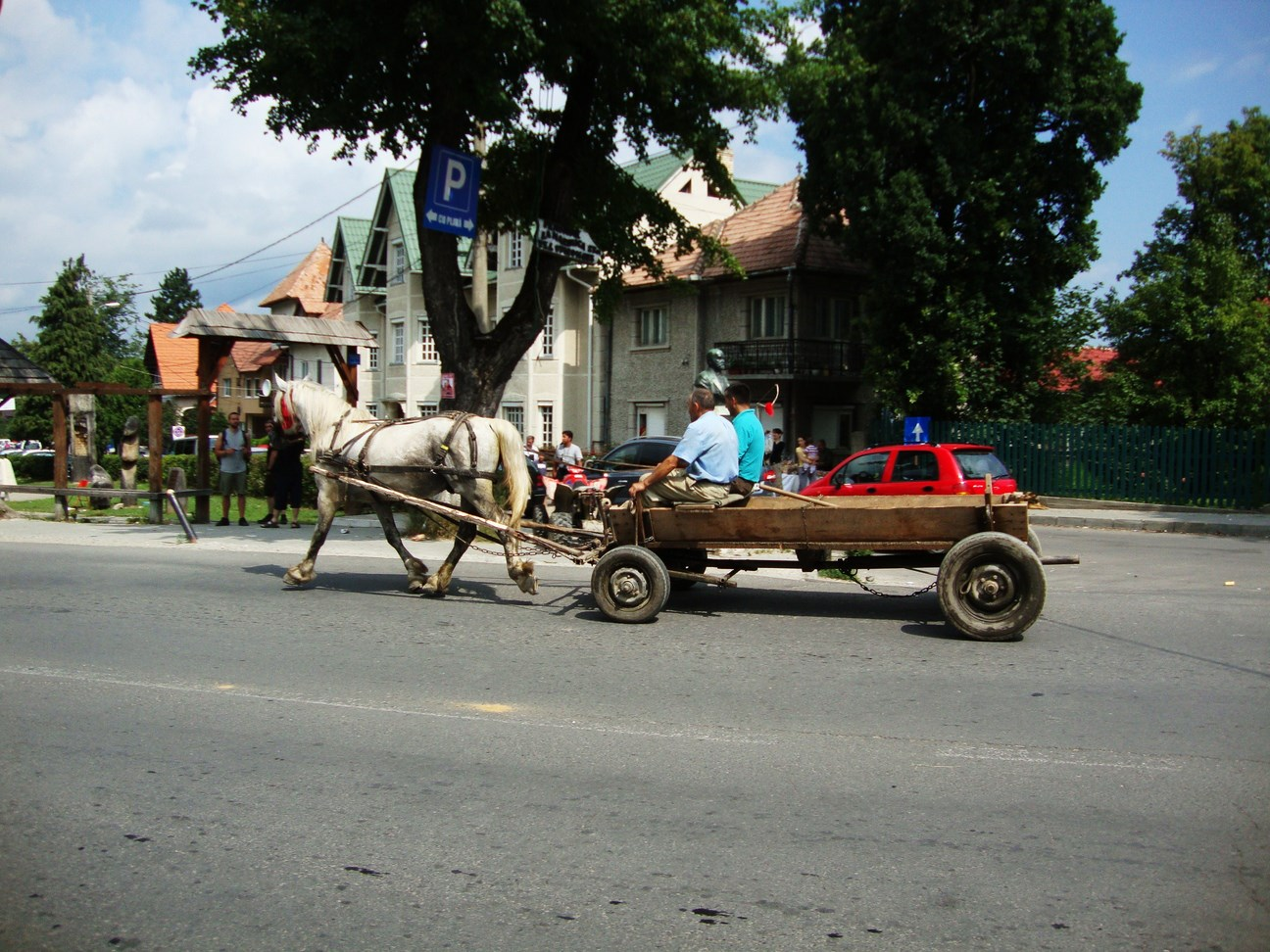 konské záprahy v rumunsku