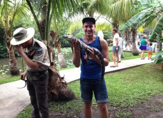 krokodil-florida