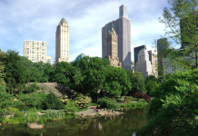 mrakodrapy-new-york