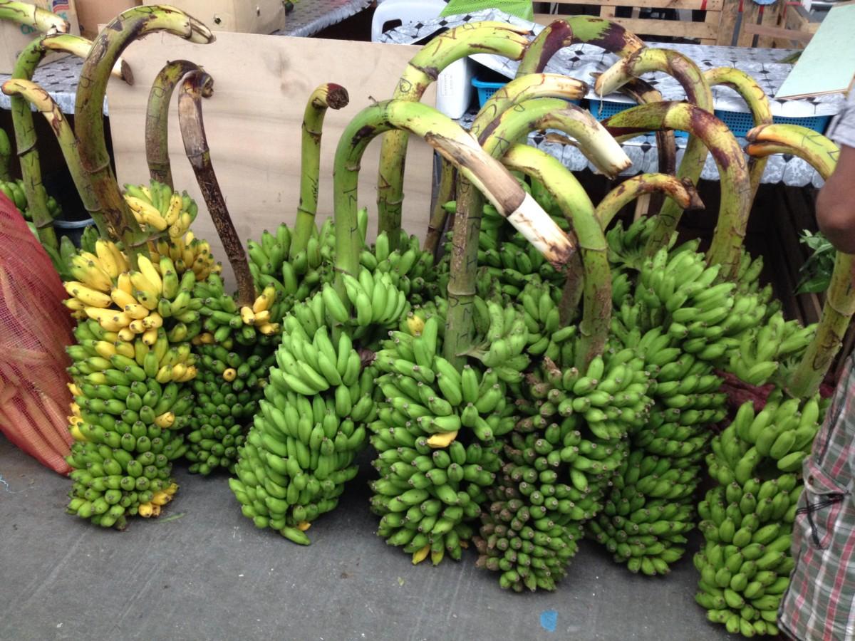 Banány sa vozia najmä zo Srí Lanky a Indie