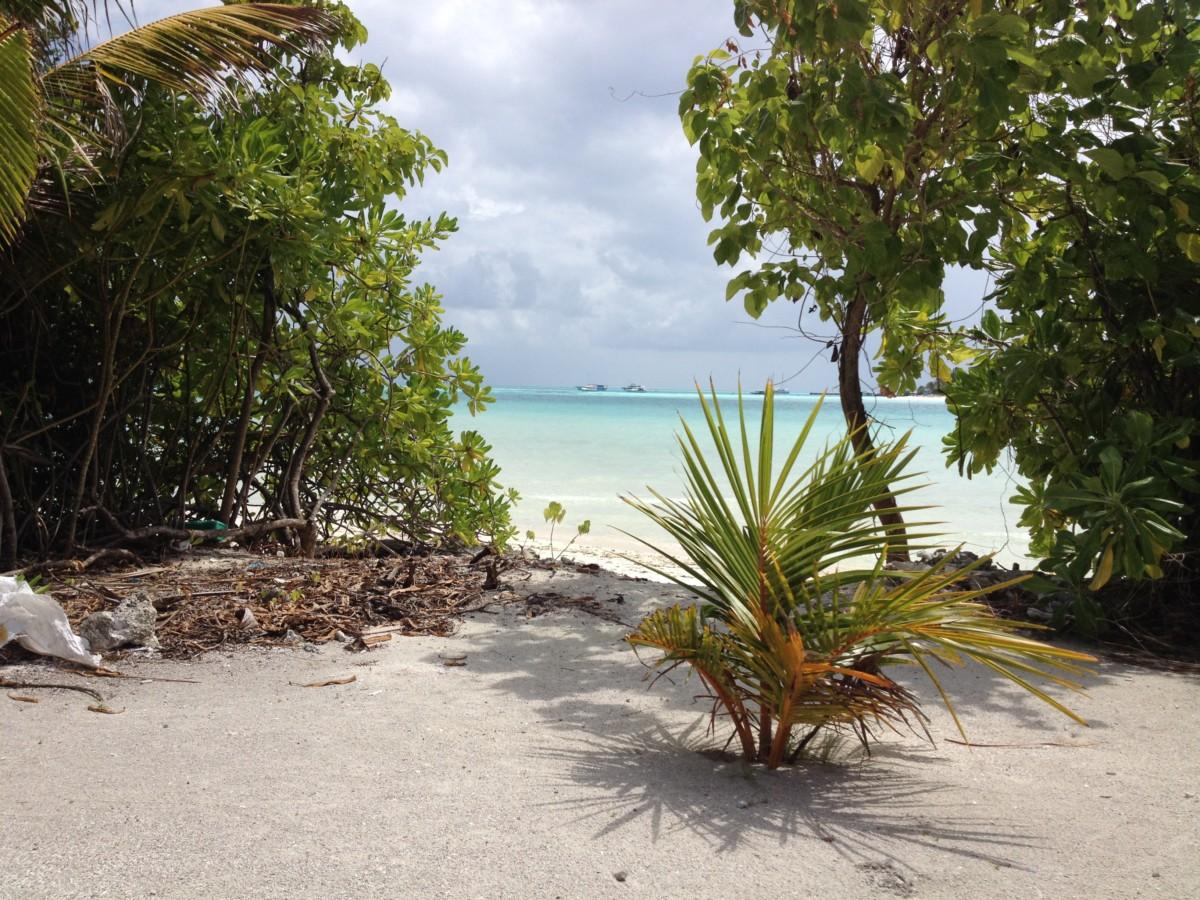 Počasie na Maledivách