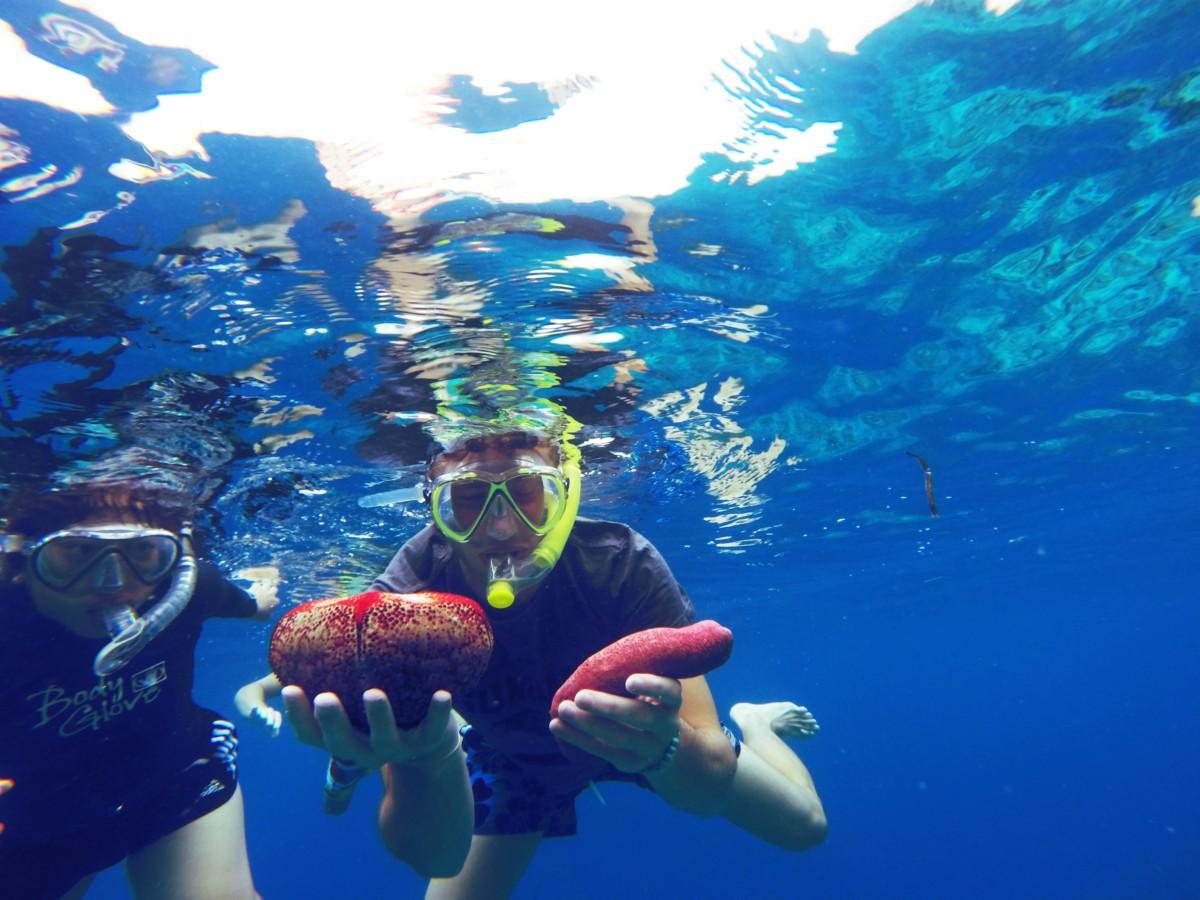 Potápanie na Maldivách