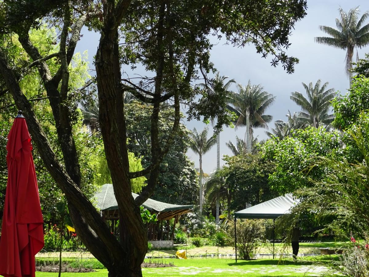 botanická záhrada v bogote