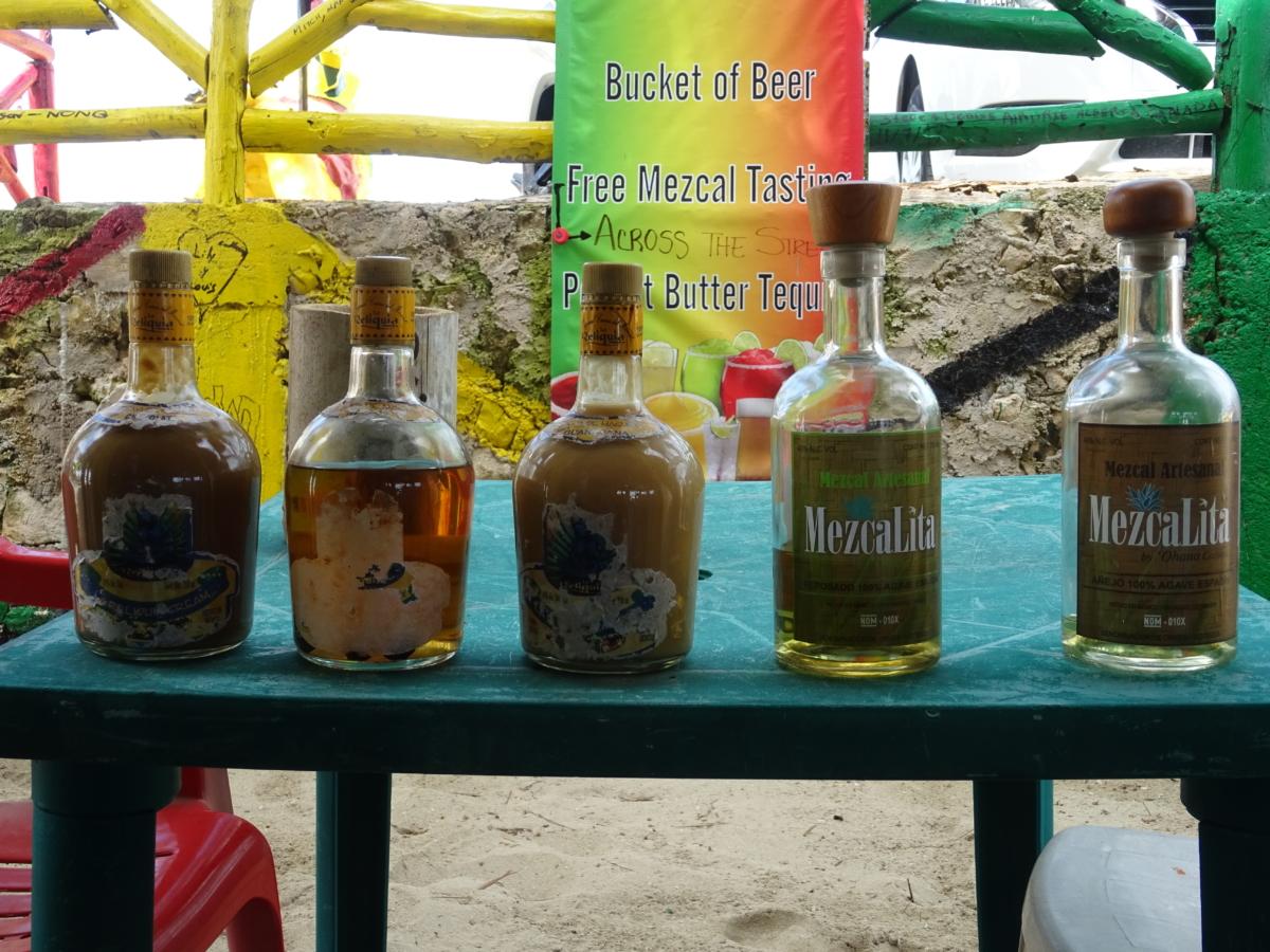 mexická tequila