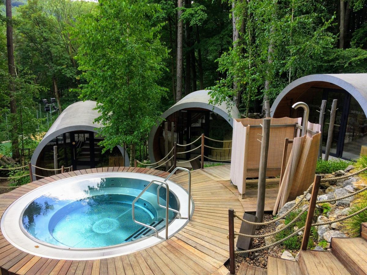 sauny zelena zaba