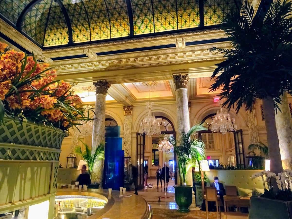 hotel plaza návšteva new york
