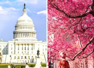 Čo treba vidieť vo Washingtone D.C., kam ísť a reštaurácie, kde som jedol