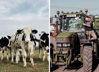 Farmári vo Važci vedia, ako robiť ekologické poľnohospodárstvo
