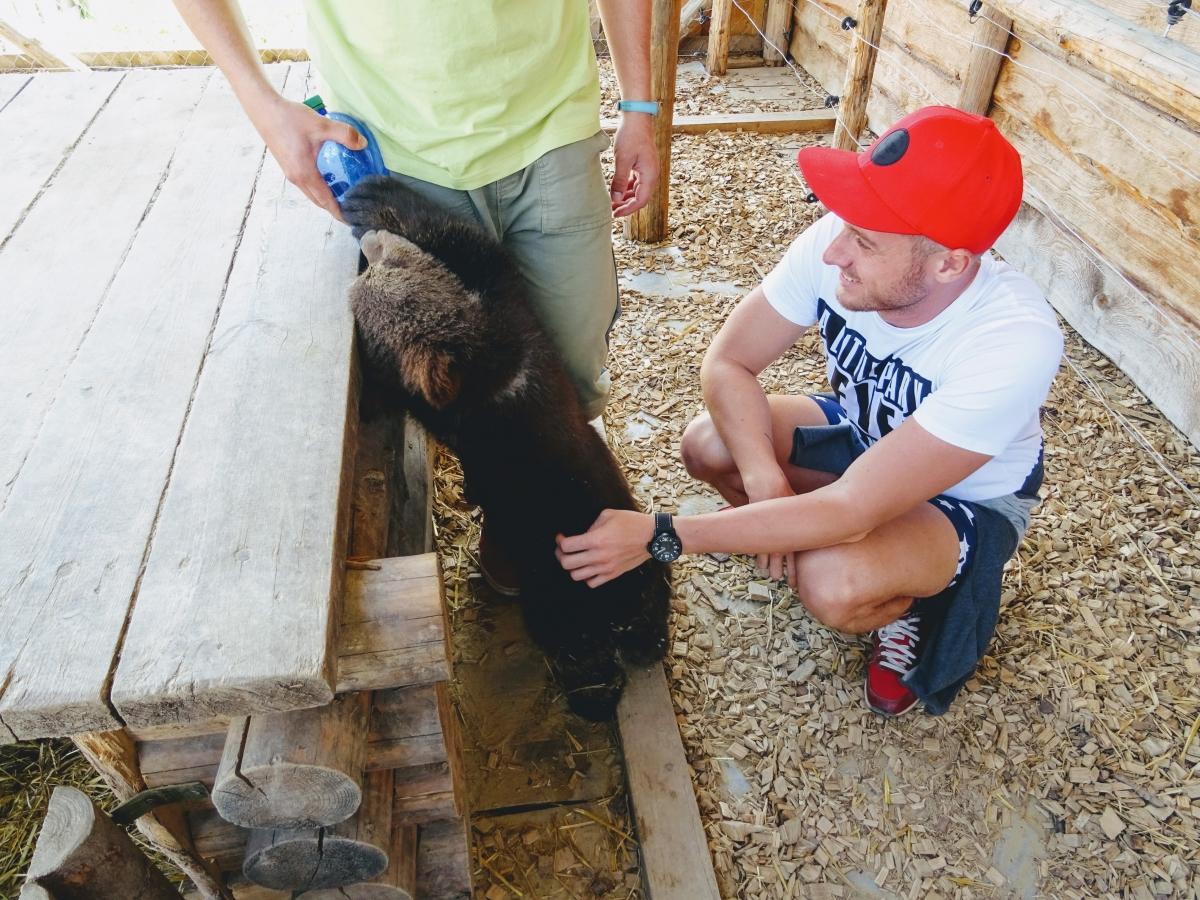 V ZOO kontakt majú aj medvede.