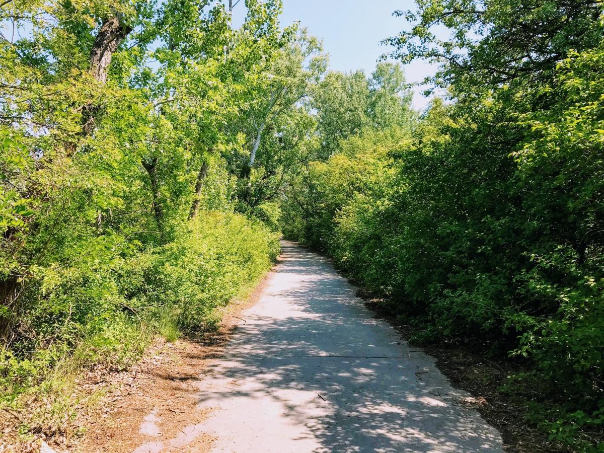 Cesta na Čunovské jazerá.