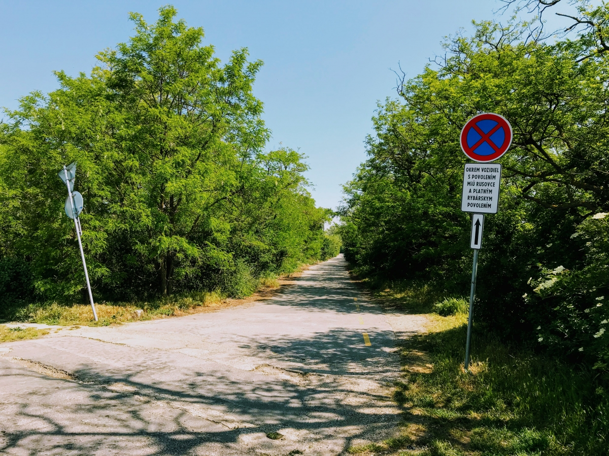 Hlavná príjazdová cesta k Čunovským jazerám.