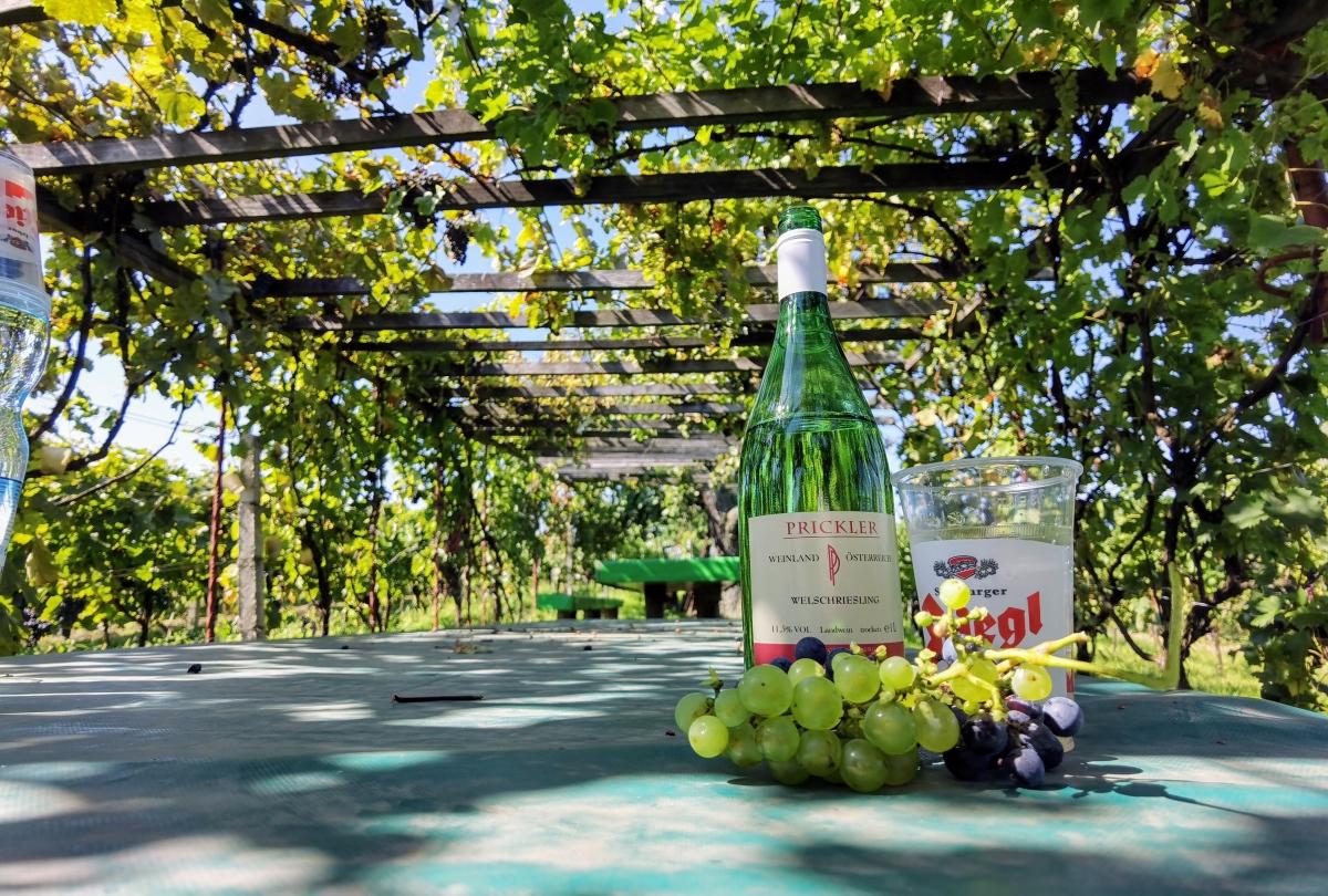 Segway tour s ochutnávkou vína v meste Deutschkreutz