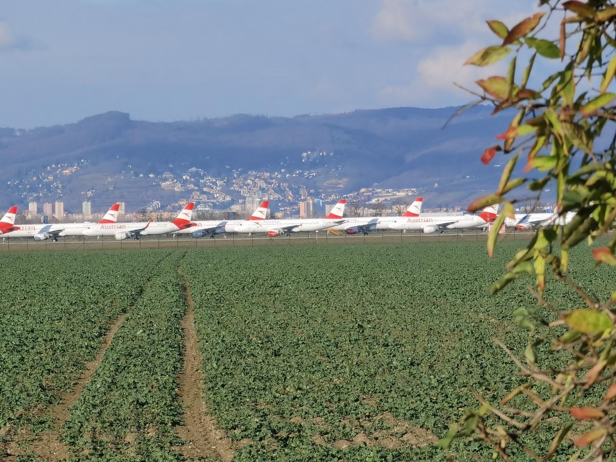 Parkovanie lietadiel Austrian airlines na letisku v Bratislavy počas pandémie koronavírusu.