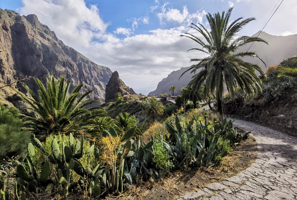 Návšteva Masca na Tenerife.