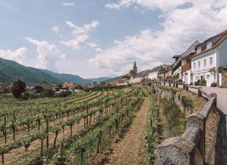 Weinviertel.